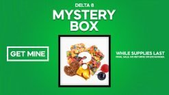 delta 8 mystery boxes
